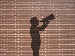 shadow megaphone