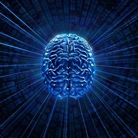 brain digital
